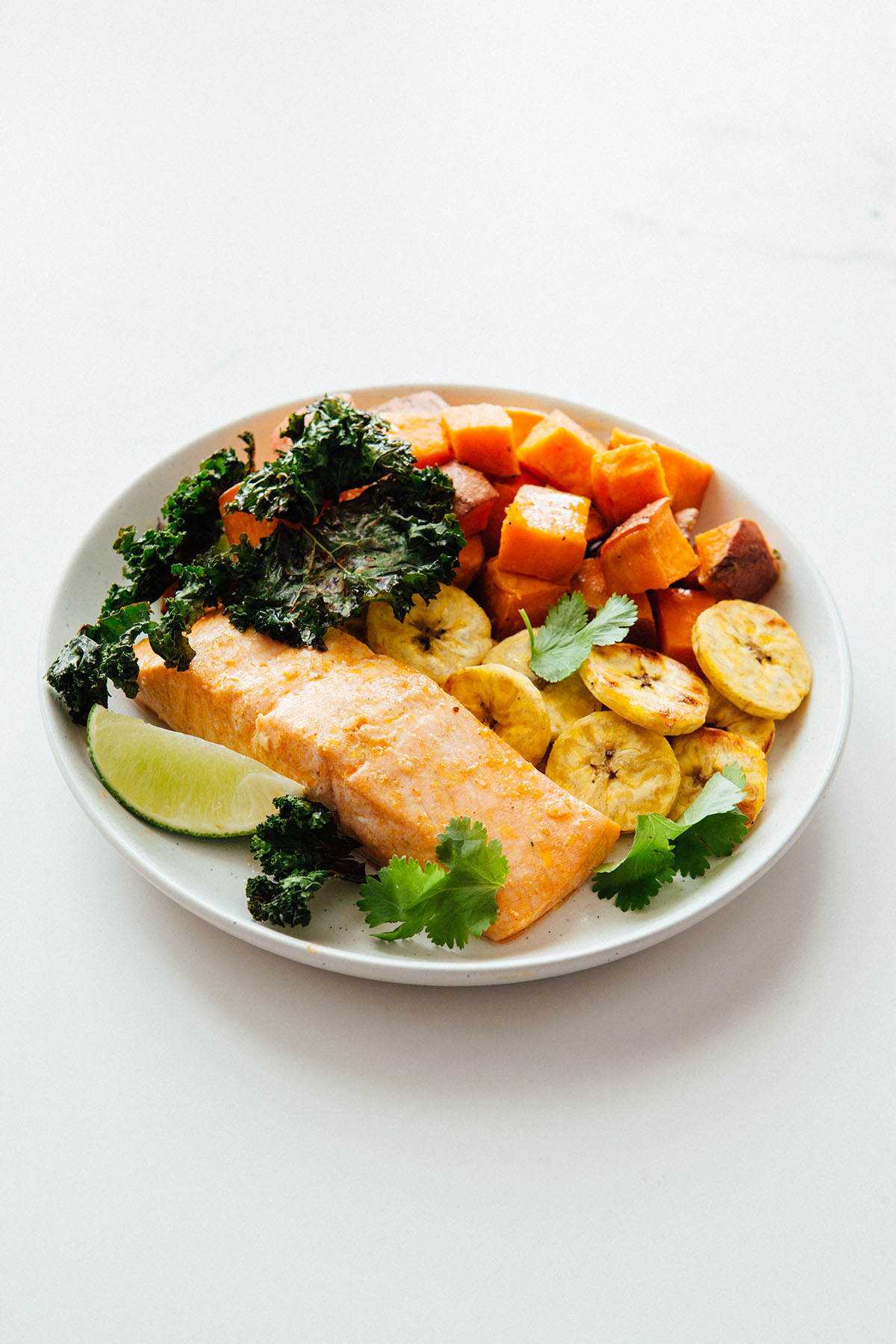 Salmon dinner on a plate.