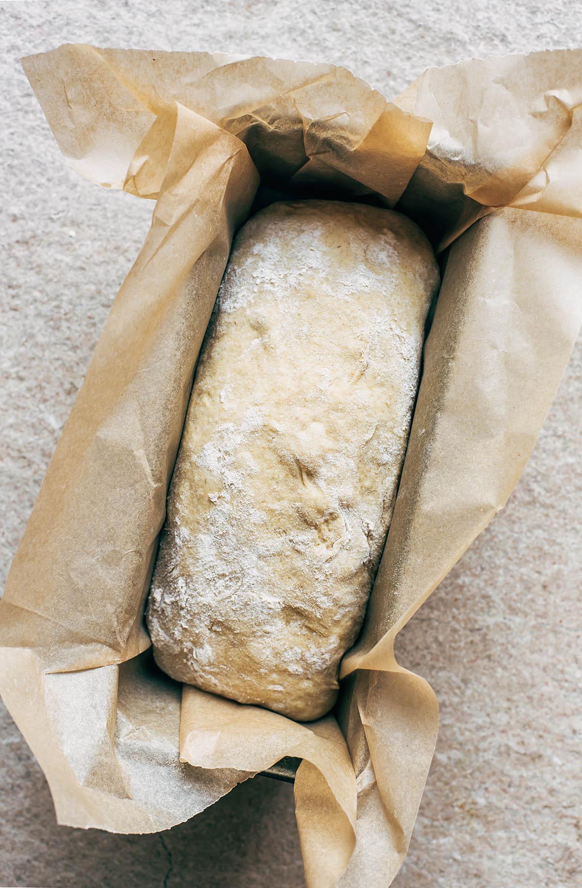 A loaf of sourdough sandwich bread rising in a tin.
