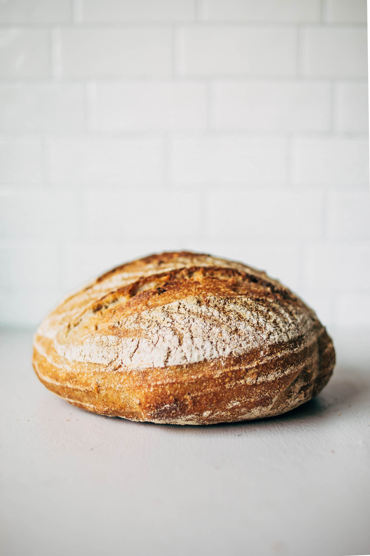Loaf of sourdough bread on white background.