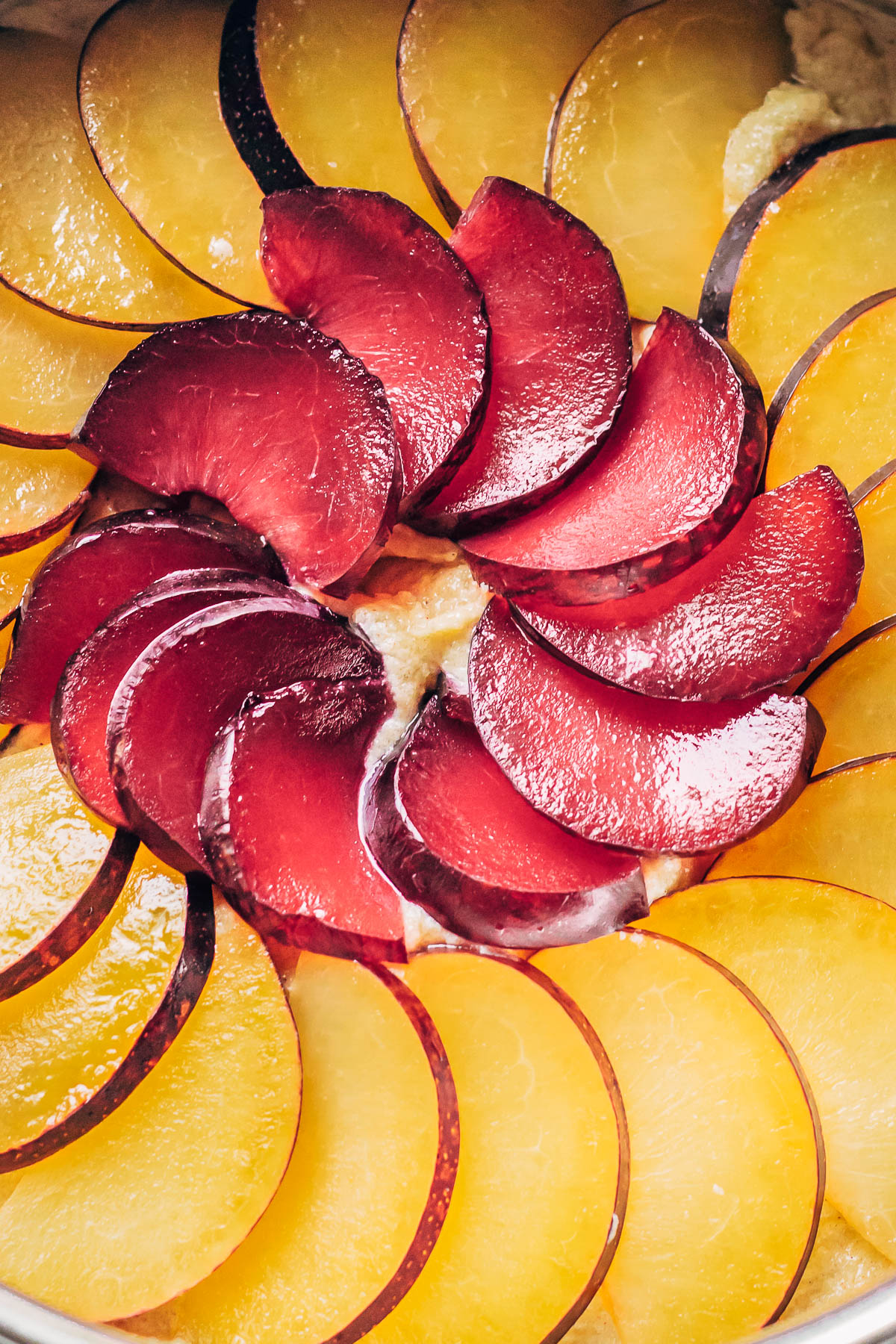 Sliced plums fanned out in a circle in the bottom of a cake pan.
