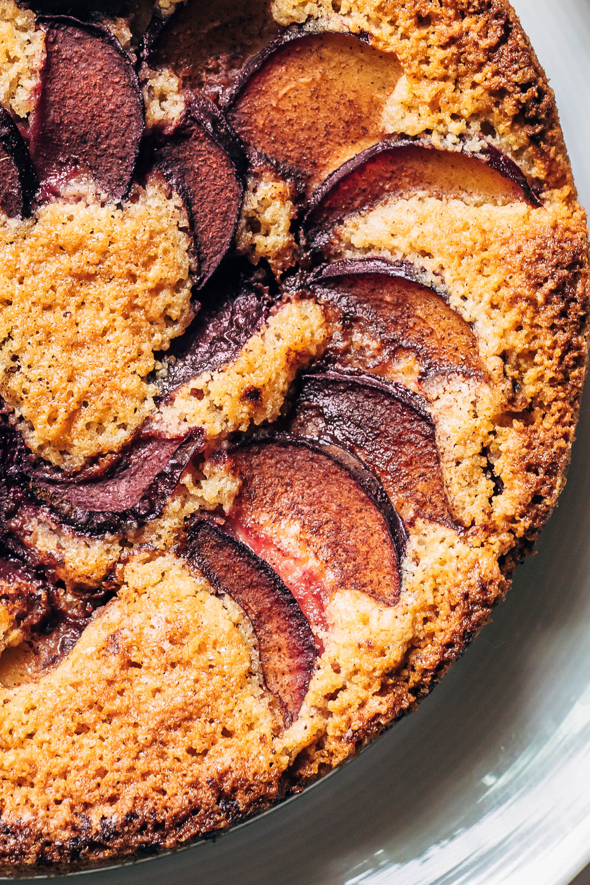 Close up of the top of a plum cake.