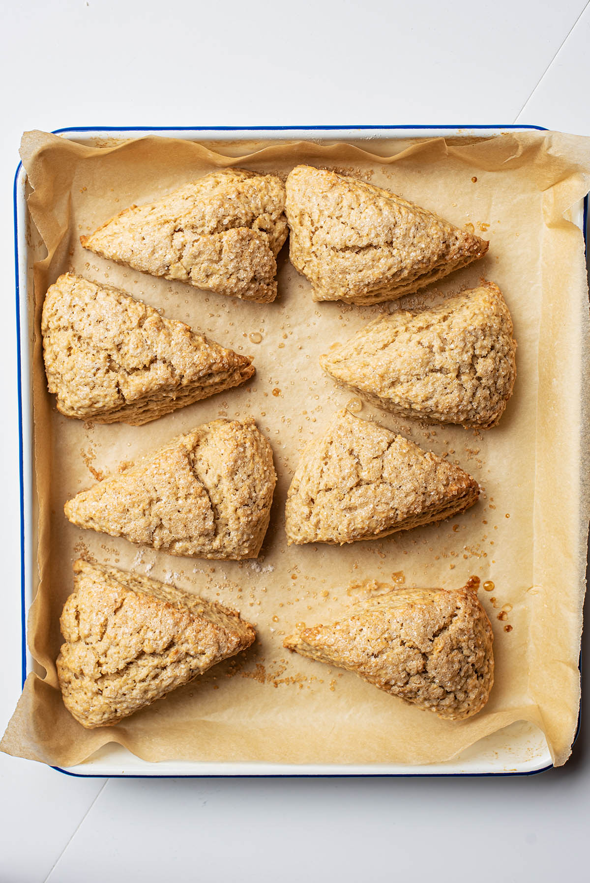 Sugar topped triangular scones on a baking sheet.