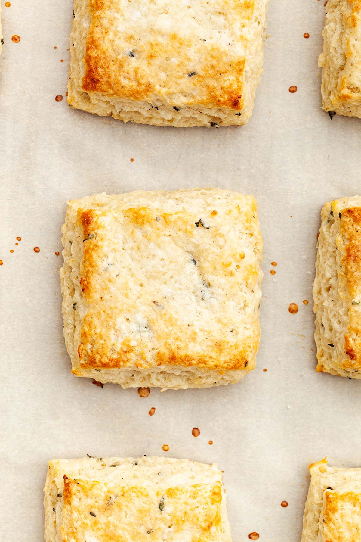 Close up overhead image of rosemary biscuits on a baking tray.