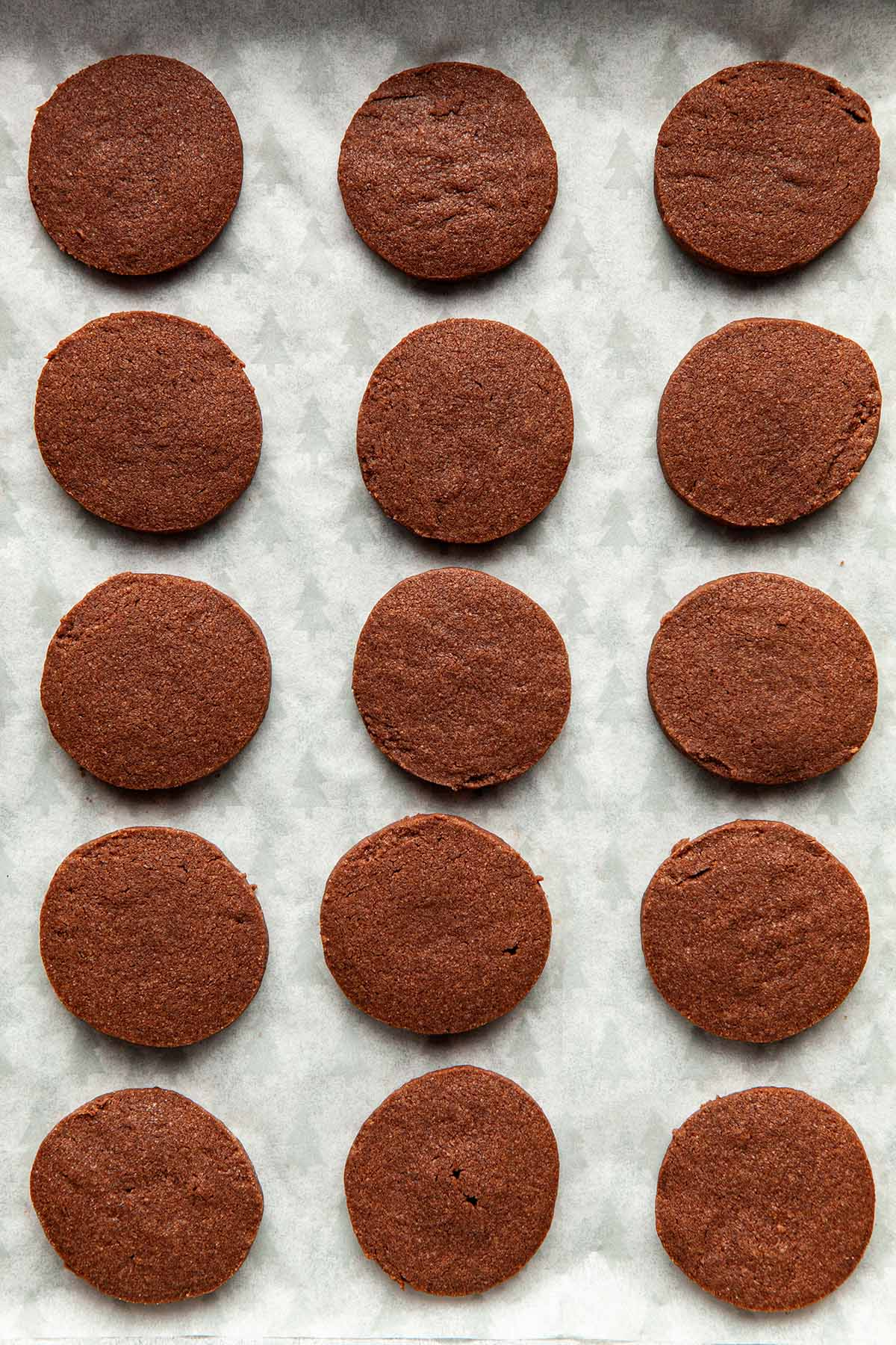 Close up of baked chocolate shortbread cookies on parchment paper.