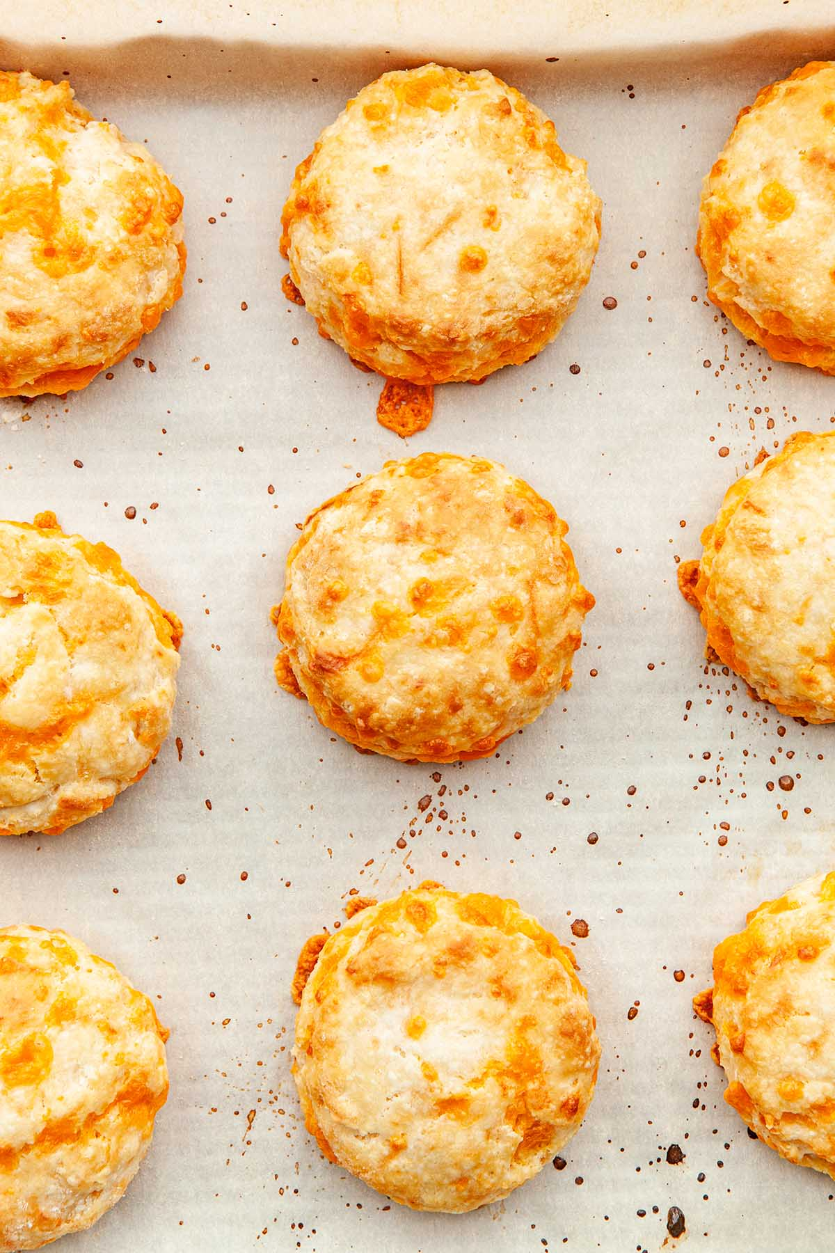 Close up of easy cheese tea biscuits.
