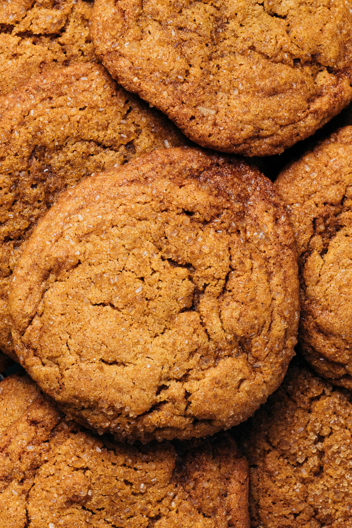 Close up overhead image of sugar & spice cookies.