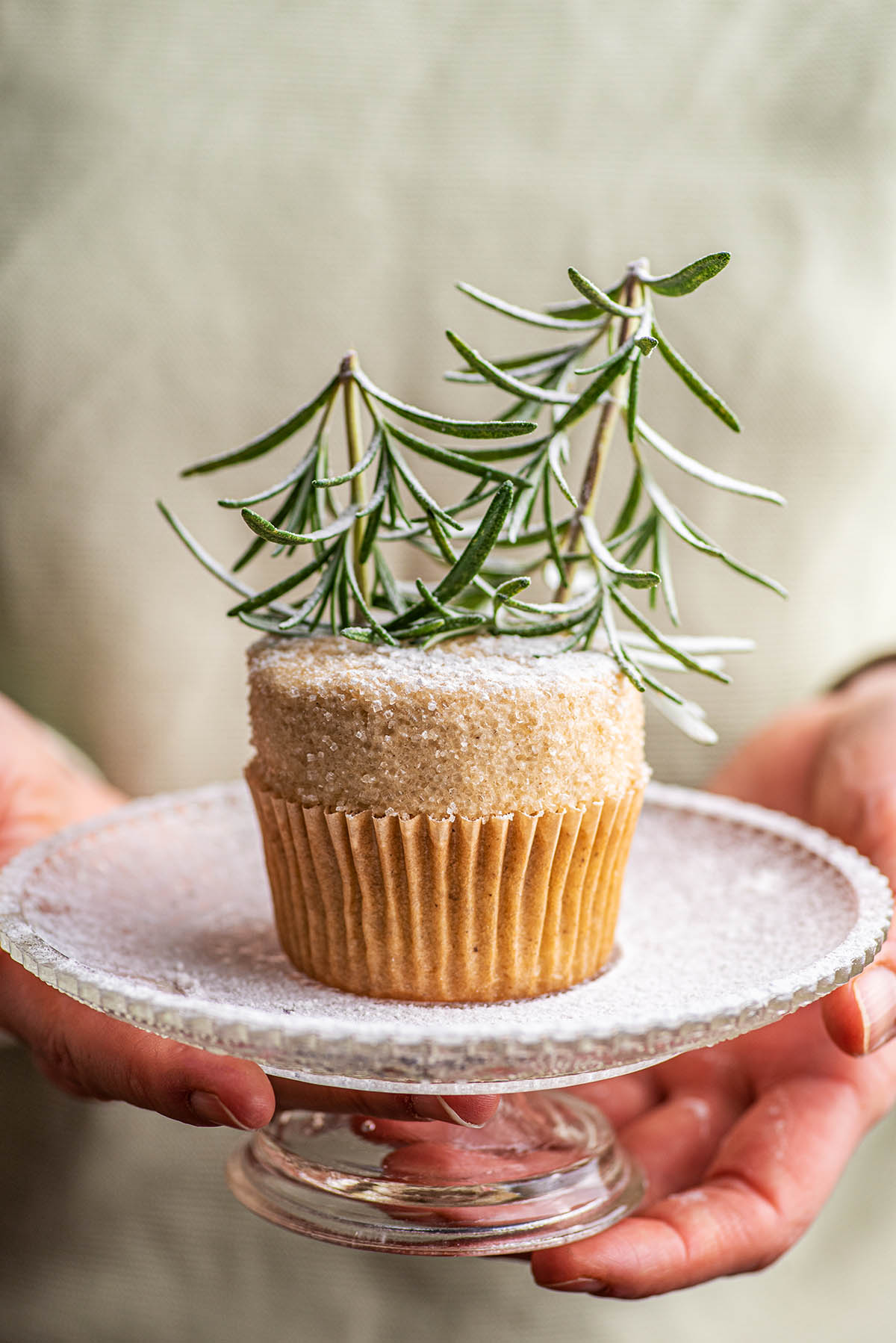 A rosemary tree topped cupcake held in front of a woman.