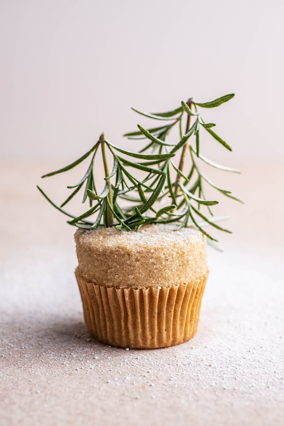 A cupcake decorated with a flat top of buttercream, coarse sugar, and rosemary trees.