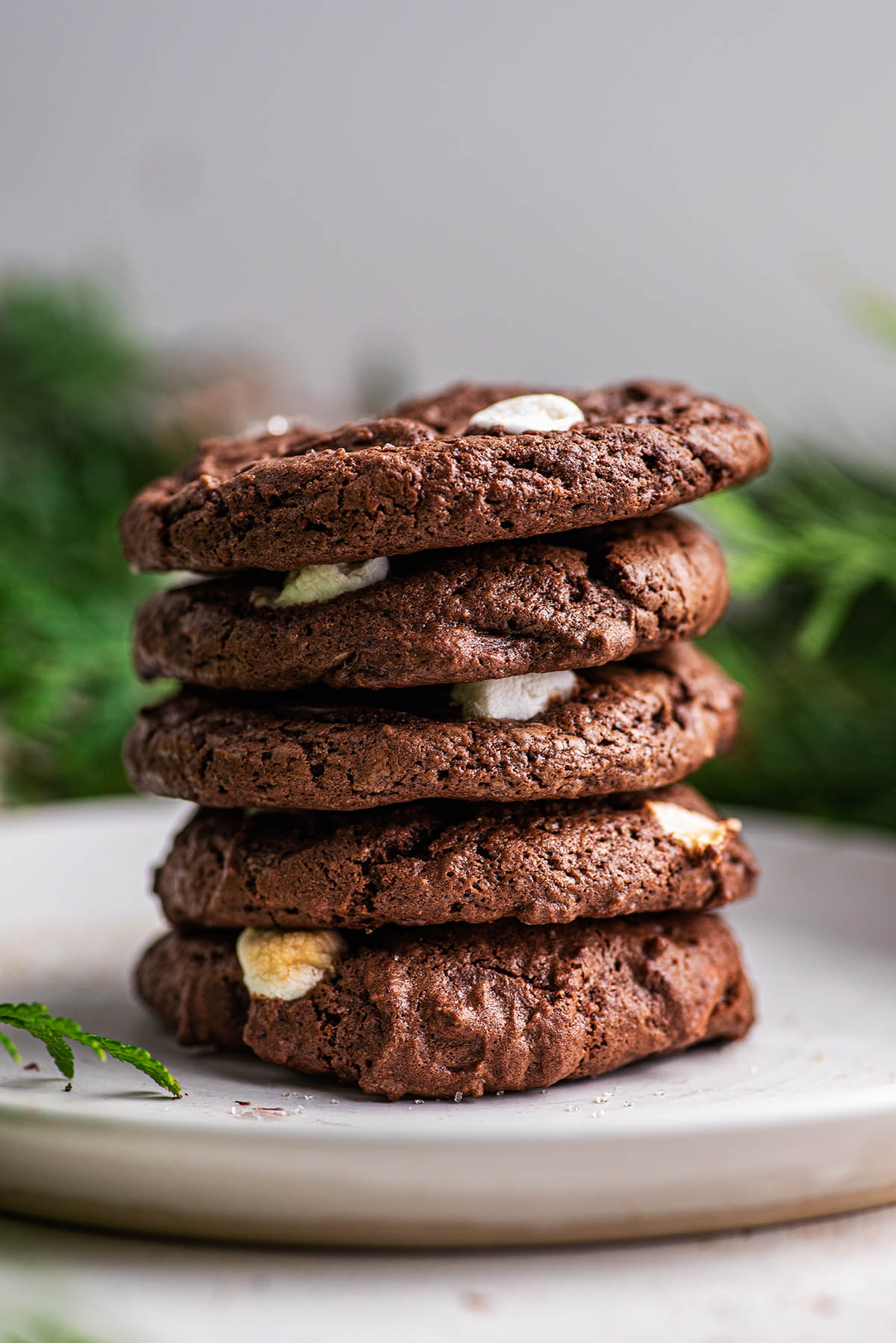 A stack of double chocolate cookies.