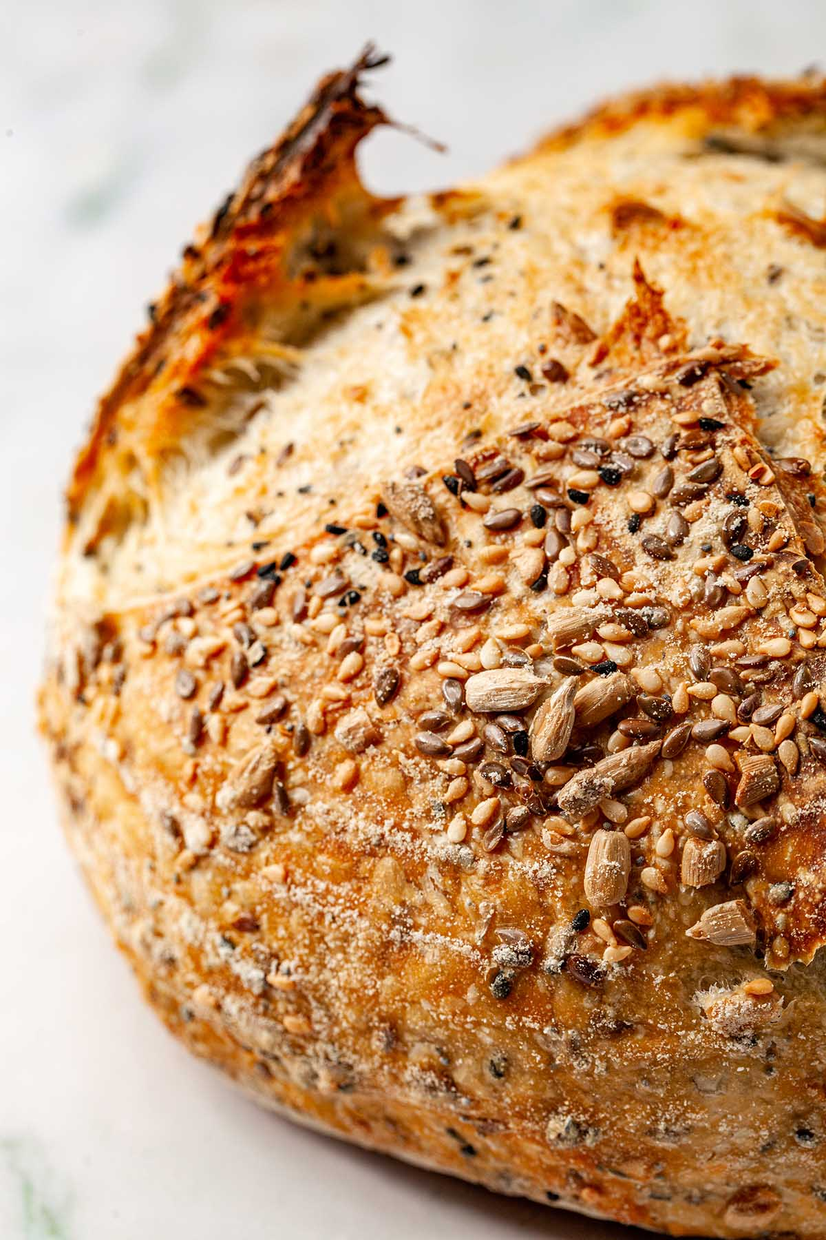 A close up of a seedy sourdough bread.