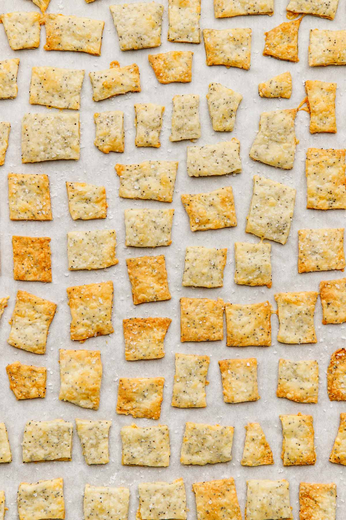 Overhead close up of a tray of  homemade white cheddar crackers.