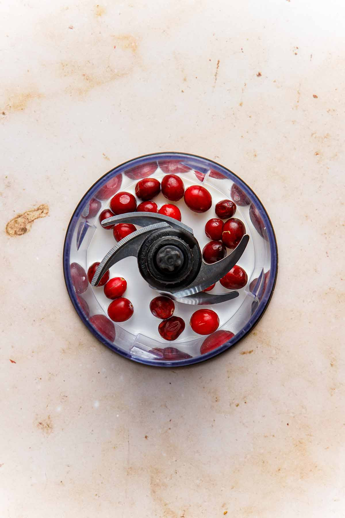Fresh cranberries and milk in the bowl of a small food processor.